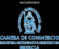 lobo_CameraCommercioBS